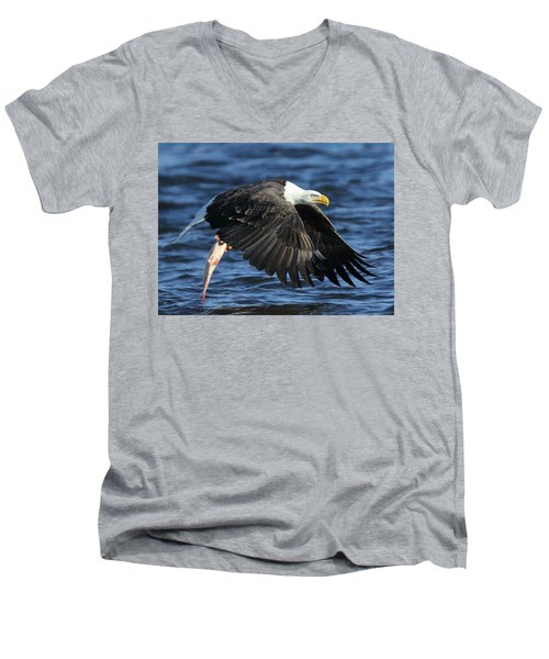 Men's V-Neck T-Shirt featuring the photograph Working Hard For Dinner by Coby Cooper