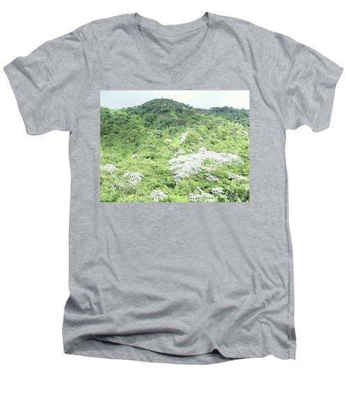 Yagrumo Men's V-Neck T-Shirt