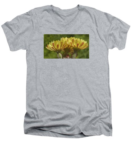 Yellow And Red Cactus Flowers Men's V-Neck T-Shirt by Elvira Butler