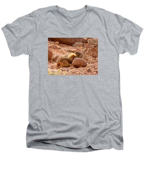 Men's V-Neck T-Shirt featuring the photograph Yellow Bellied Marmot Capitol Reef Utah by Deborah Moen