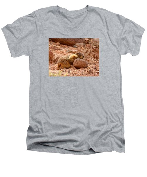 Yellow Bellied Marmot Capitol Reef Utah Men's V-Neck T-Shirt