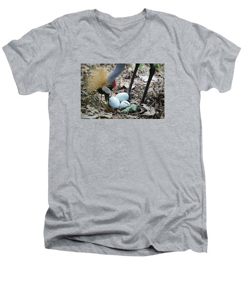 Yellow Crowned Crane Tending To Her Eggs Men's V-Neck T-Shirt