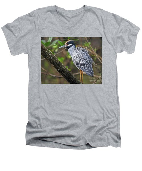 Yellow Crowned Night Heron Men's V-Neck T-Shirt