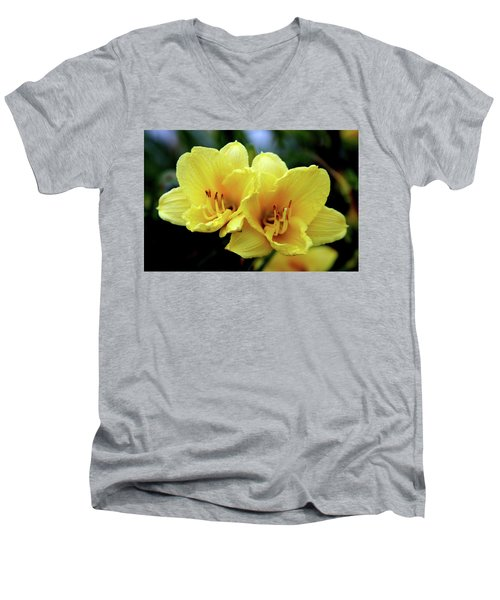 Yellow Daylilly 0204 H_2 Men's V-Neck T-Shirt