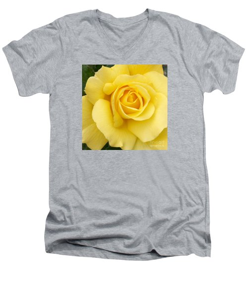 Yellow Gold Men's V-Neck T-Shirt by Sandy Molinaro