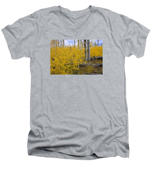 Yellow In Grand Teton Men's V-Neck T-Shirt