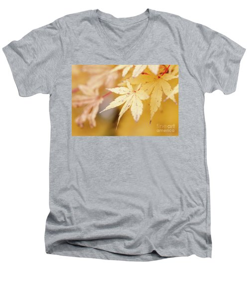 Yellow Leaf With Red Veins Men's V-Neck T-Shirt