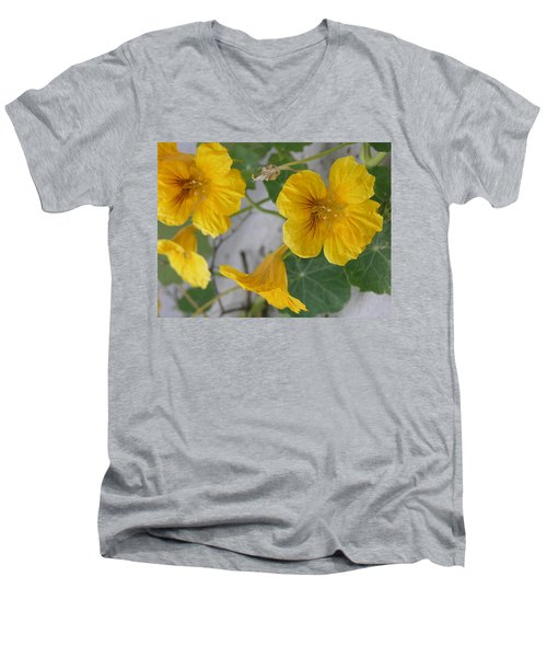 Yellow Nasturtium Men's V-Neck T-Shirt