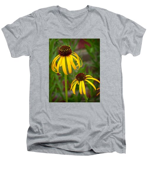 Yellow Pair Men's V-Neck T-Shirt