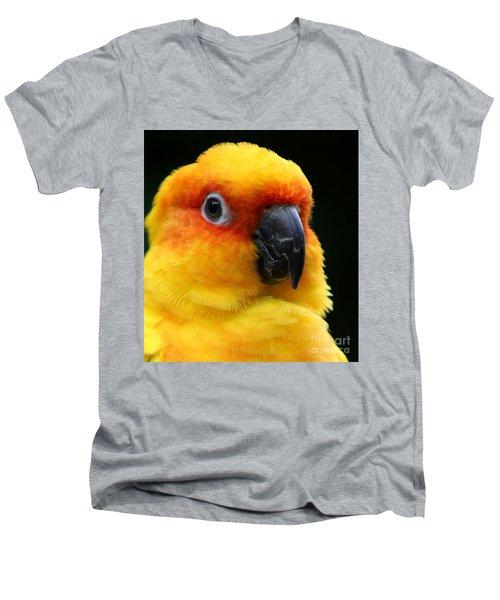 Yellow Parrot Closeup Men's V-Neck T-Shirt