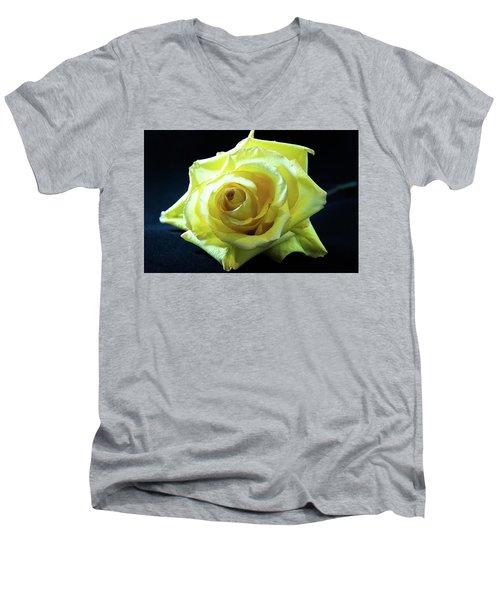 Yellow Rose-7 Men's V-Neck T-Shirt