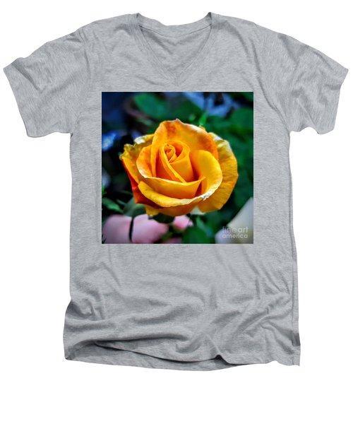 Yellow Rose Men's V-Neck T-Shirt by Garnett Jaeger