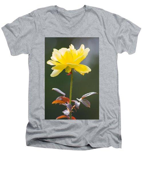 Yellow Rose Men's V-Neck T-Shirt