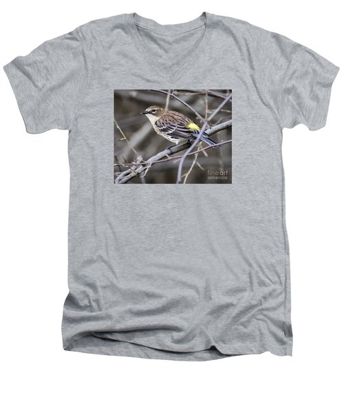 Men's V-Neck T-Shirt featuring the photograph Yellow-rumped Warber In Fall Colors by Ricky L Jones