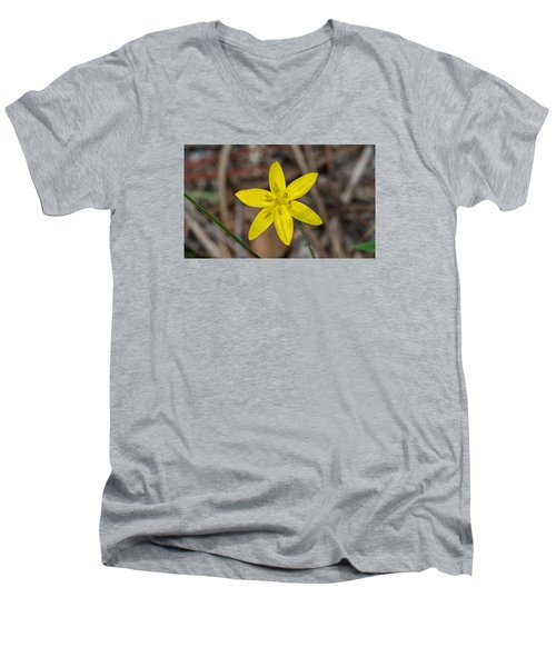 Yellow Star Grass Flower Men's V-Neck T-Shirt by Kenneth Albin