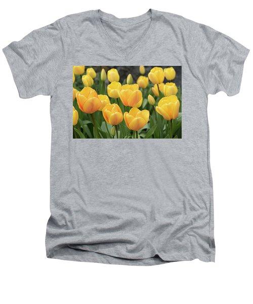 Yellow Tulips Men's V-Neck T-Shirt