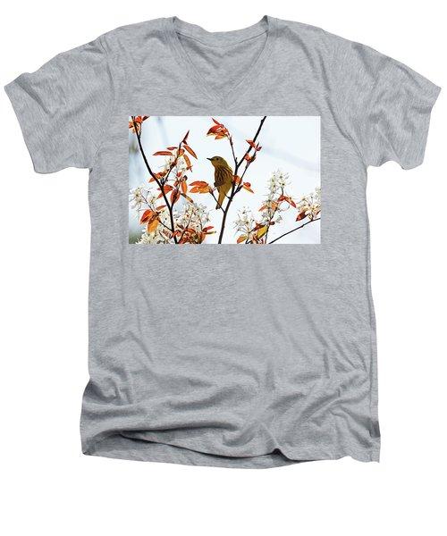 Yellow Warbler Men's V-Neck T-Shirt by Debbie Oppermann