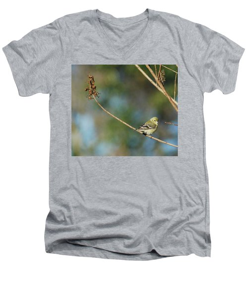 You Lookin' At Me? Men's V-Neck T-Shirt