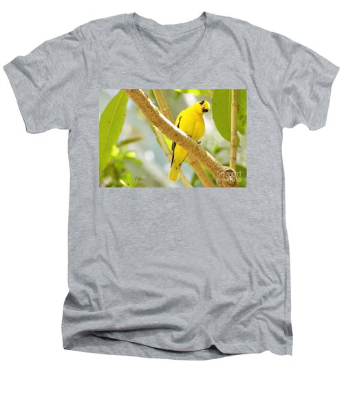 You Looking At Me? Men's V-Neck T-Shirt