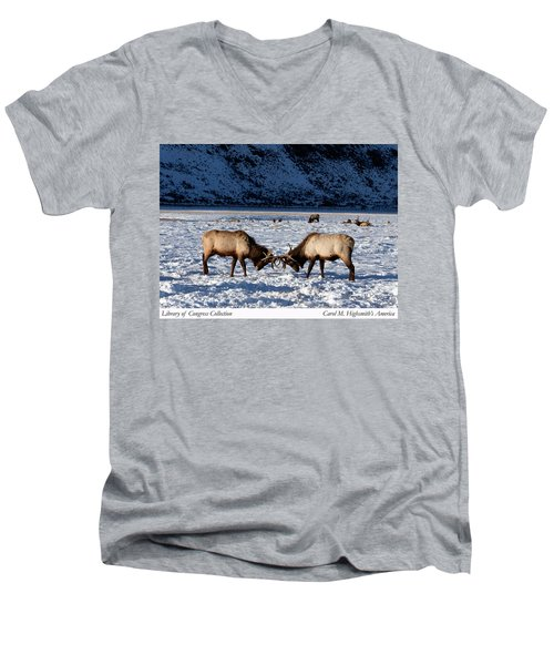 Young Bull Elk In Jackson  Hole In Wyoming Men's V-Neck T-Shirt