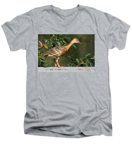 Young Duck Men's V-Neck T-Shirt