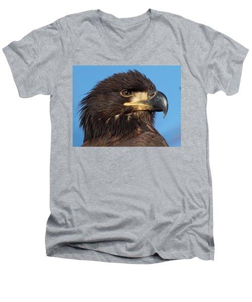 Young Eagle Head Men's V-Neck T-Shirt by Sheldon Bilsker