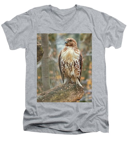 Young Red Tailed Hawk  Men's V-Neck T-Shirt