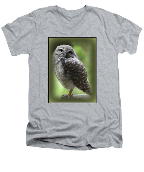 Young Snowy Owl Men's V-Neck T-Shirt