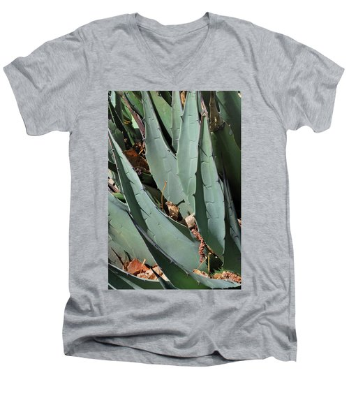 Yucca Leaves Men's V-Neck T-Shirt