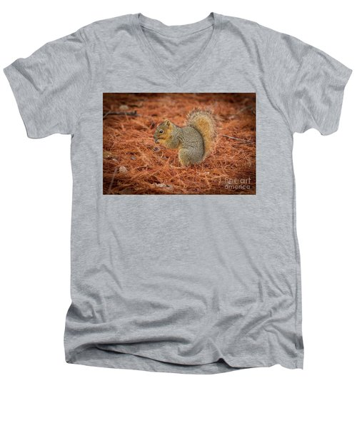 Yum Yum Nuts Wildlife Photography By Kaylyn Franks     Men's V-Neck T-Shirt