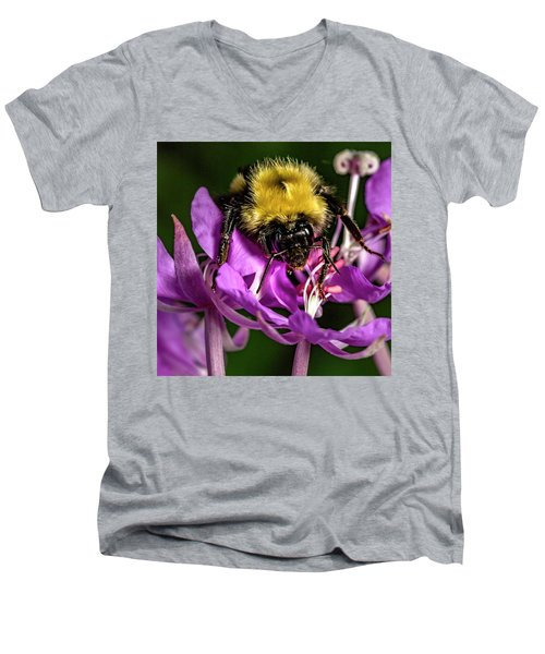 Men's V-Neck T-Shirt featuring the photograph Yummy Pollen by Darcy Michaelchuk
