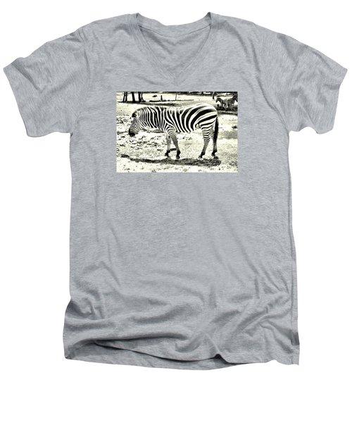 Zebra In Black And White Men's V-Neck T-Shirt by James Potts