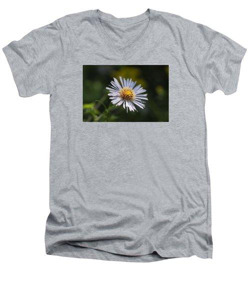 Zigzag Aster Men's V-Neck T-Shirt