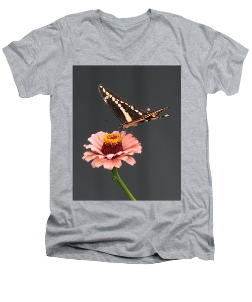Zinnia With Butterfly 2702 Men's V-Neck T-Shirt
