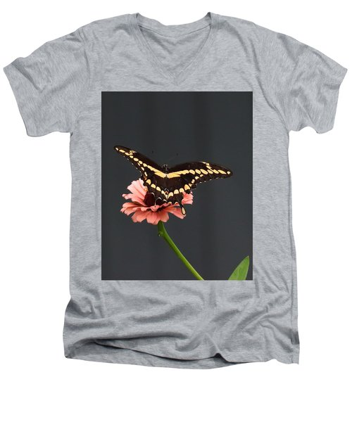 Zinnia With Butterfly 2708  Men's V-Neck T-Shirt