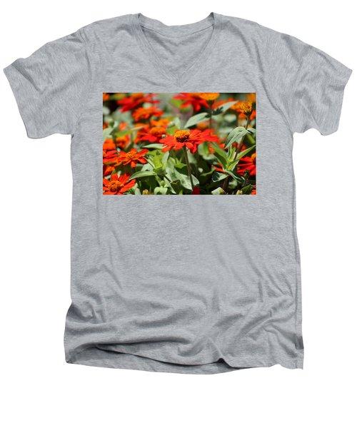 Zinnias In Autumn Colors Men's V-Neck T-Shirt