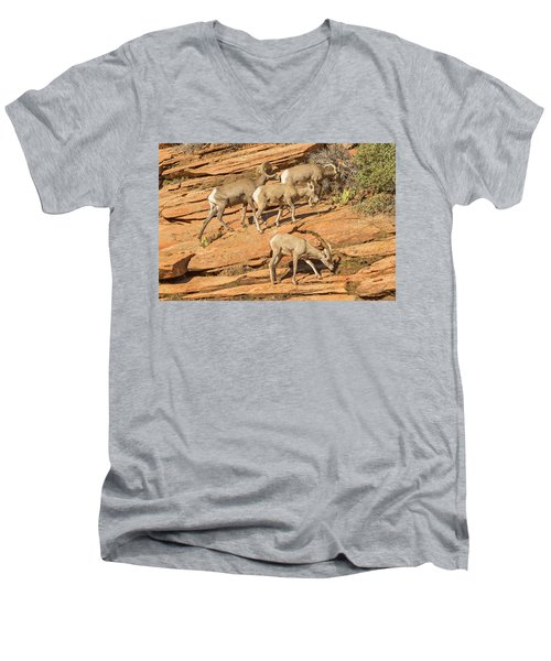 Men's V-Neck T-Shirt featuring the photograph Zion Big Horn Sheep by Peter J Sucy
