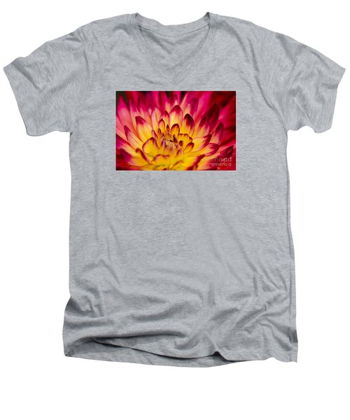 Zoey Rey Men's V-Neck T-Shirt by Nick  Boren