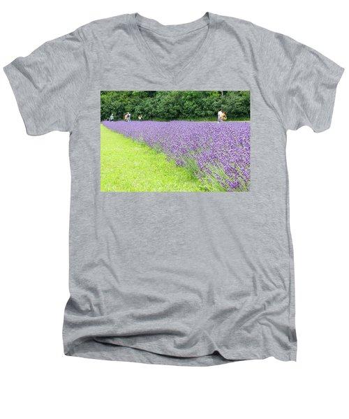 Blue Lavender Men's V-Neck T-Shirt