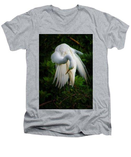 Breeding Plumage And Color Men's V-Neck T-Shirt