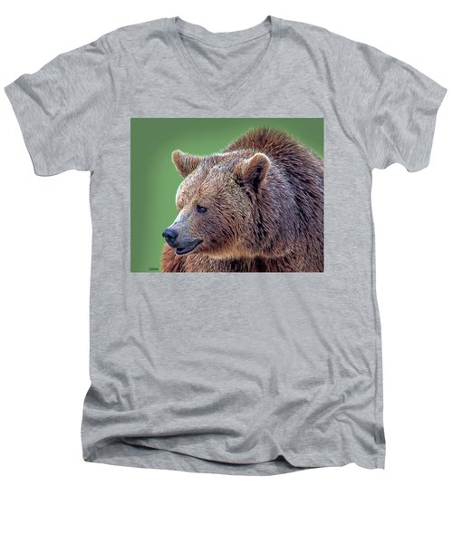 Brown Bear 5 Men's V-Neck T-Shirt