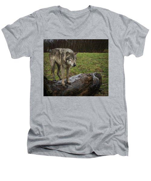 Hangin On The Log Men's V-Neck T-Shirt