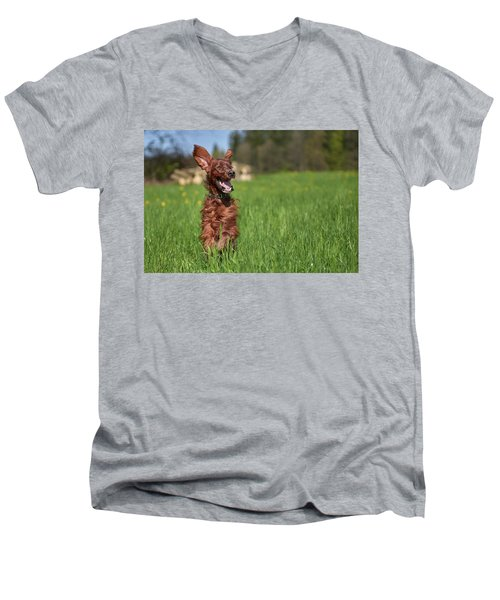 Happy Setter Men's V-Neck T-Shirt