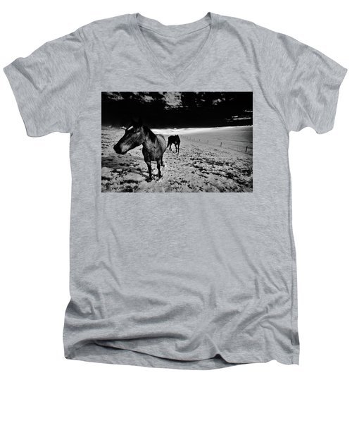Men's V-Neck T-Shirt featuring the photograph Horses On The Palouse by David Patterson