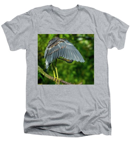 Preening Reddish Heron Men's V-Neck T-Shirt