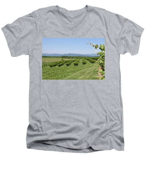 Vineyard Men's V-Neck T-Shirt