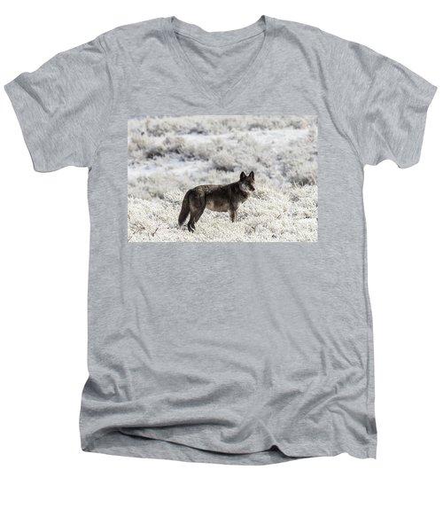 W23 Men's V-Neck T-Shirt