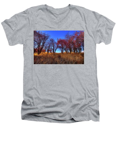 Men's V-Neck T-Shirt featuring the photograph Autumn Light by David Patterson