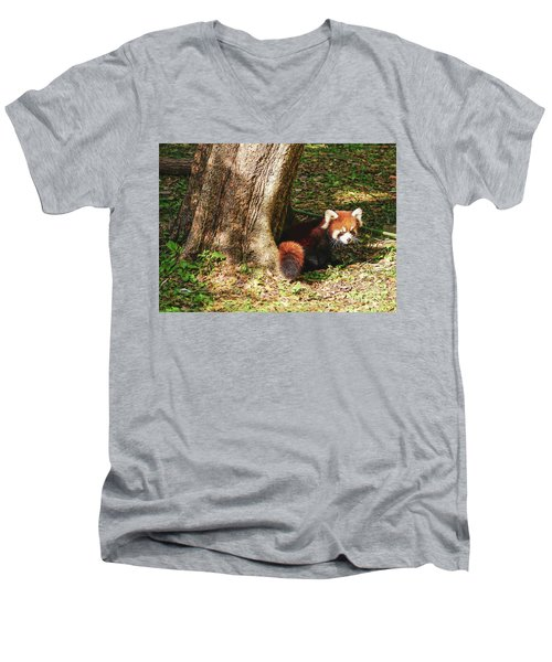 Red Panda Men's V-Neck T-Shirt