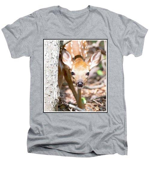White-tailed Deer Fawn, Animal Portrait Men's V-Neck T-Shirt